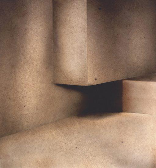 Aziz + Cucher, Interior Study #3