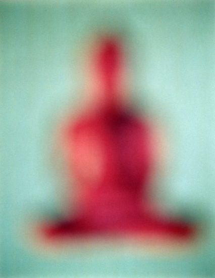 Bill Armstrong, Buddha #701
