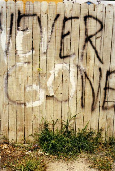 MIchael Schmelling, Fence_CUT