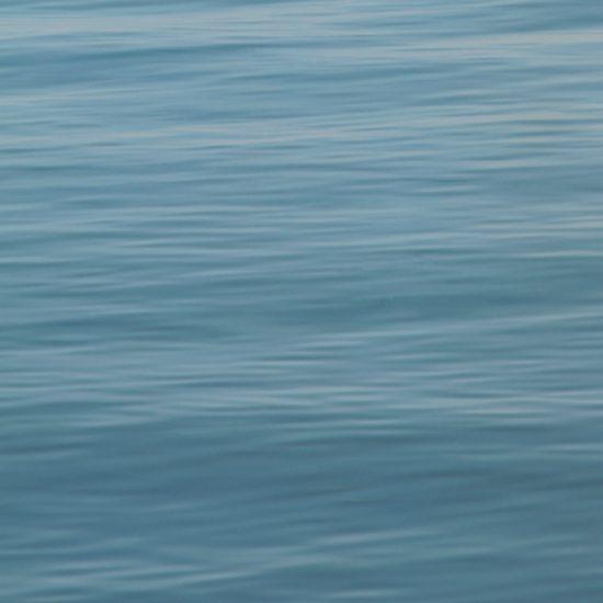 Frank Yamrus, high tide at Herring Cove Beach, Provincetown