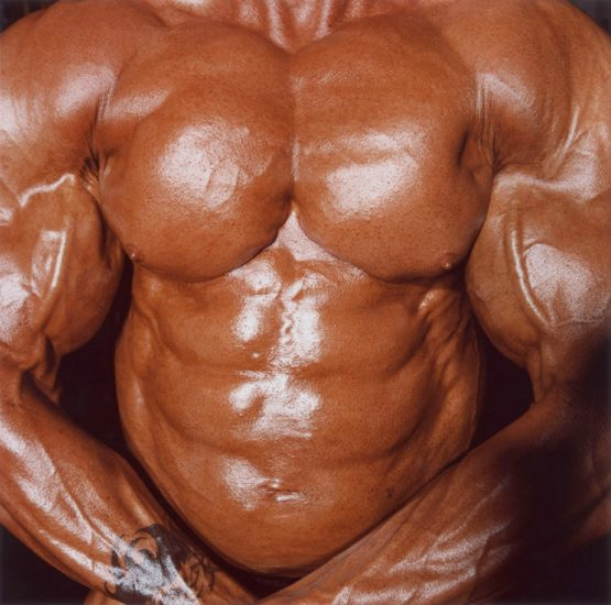 Brian Finke, Untitled (Bodybuilding 17)