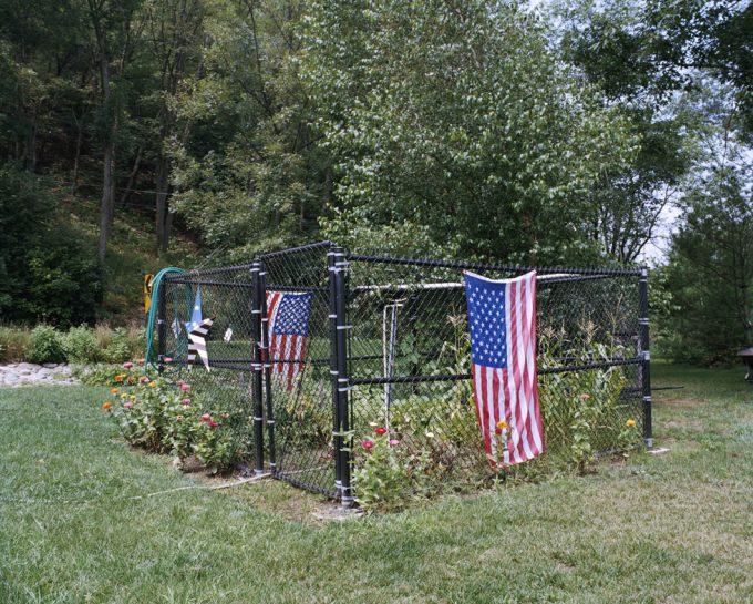 Amy Stein, Garden