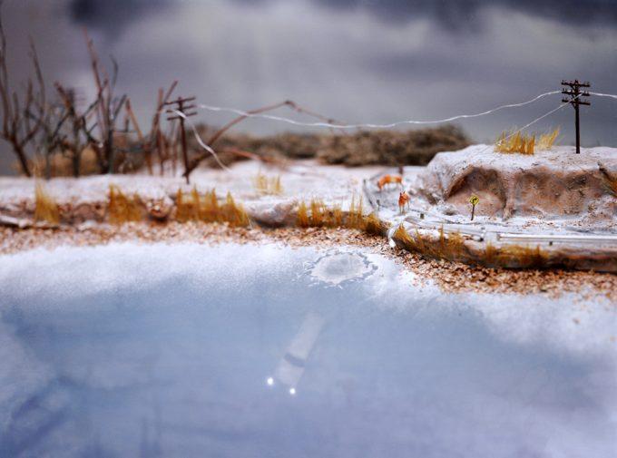 Lori Nix, Ice Storm