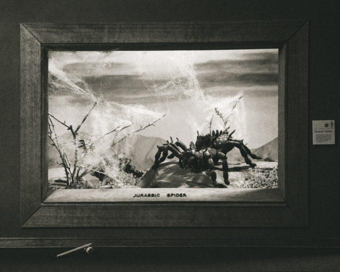 Lori Nix, Jurassic Spider