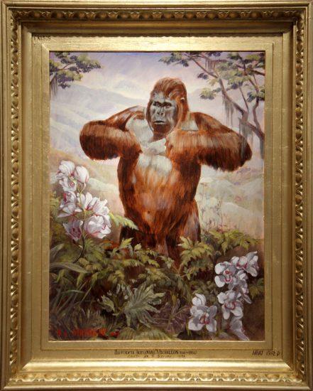 Mark Beard, Hippolyte-Alexandre Michallon, Gorille de la Savane