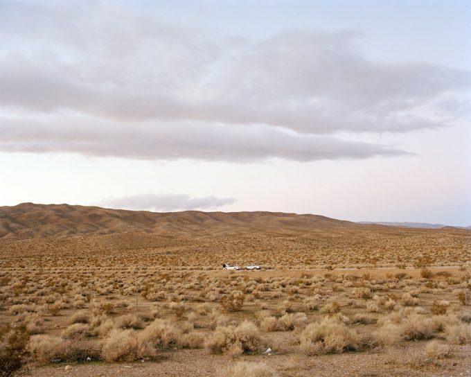 Amy Stein, Mojave Desert