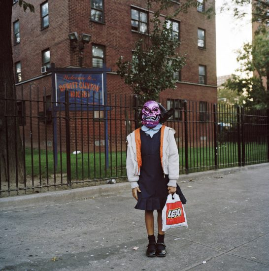 Amy Stein, Untitled (Purple Skull)