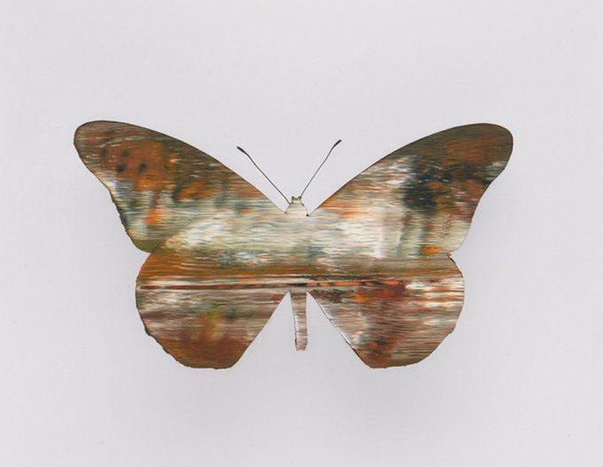 Stan Gaz, Butterfly 6
