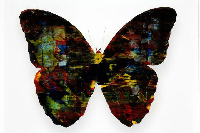 Stan Gaz, Butterfly 4