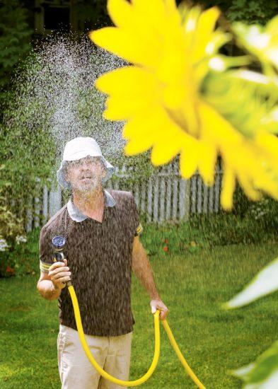 Frank Yamrus, untitled (Sunflower)