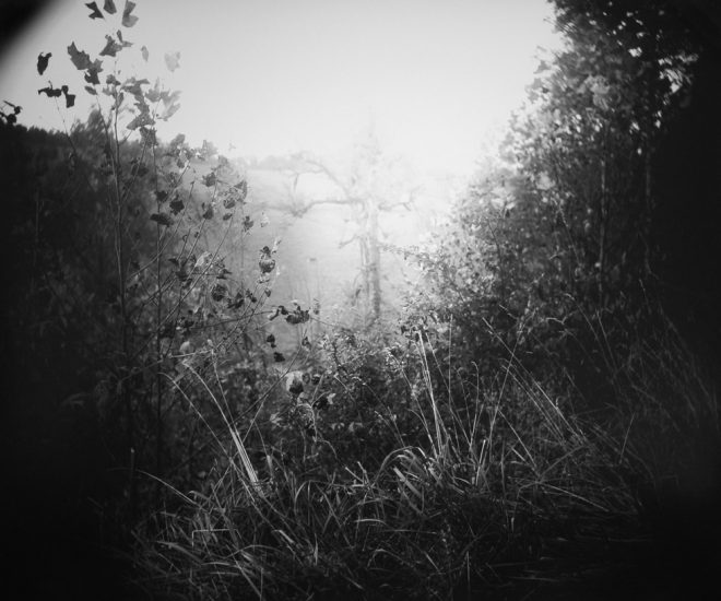 Sally Mann, Untitled, America Now and Here