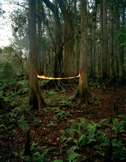 Adam Ekberg, Fire Two Trees
