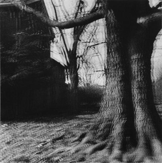 Ralph Eugene Meatyard, Motion-Sound Landscape
