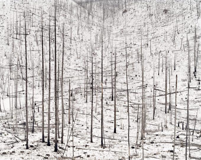 David Nadel, Burn #2