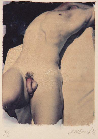 Beard_PolaroidTransfer_980
