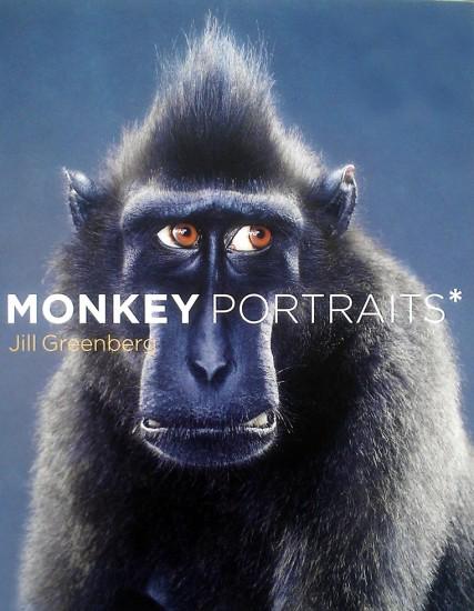 Jill Greenberg, Monkey Portraits*
