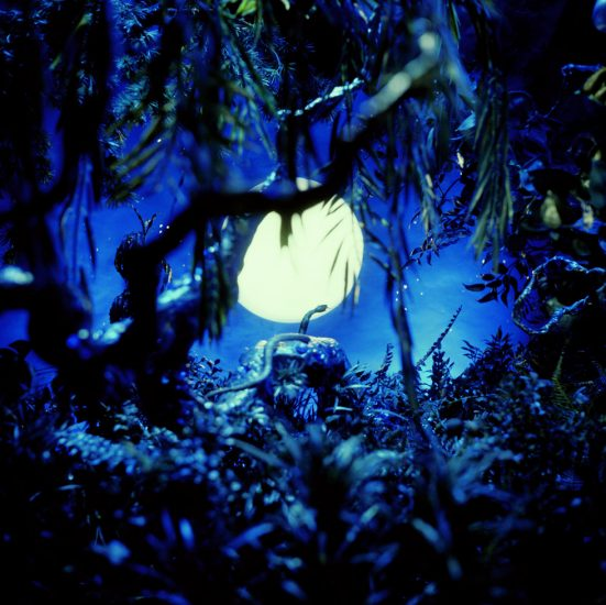 James Bidgood, Mythical Woodland, Snake Silhouetted by Moon, Blue Moon
