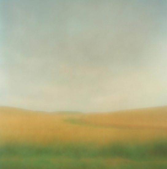 Christopher Harris, Field In Rain, Whitman County