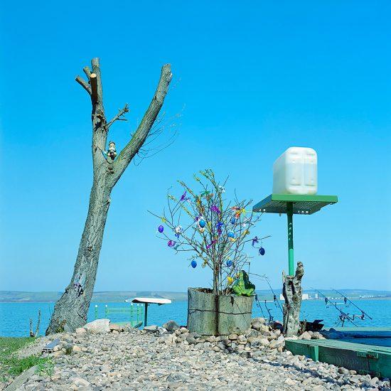 Evzen Sobek, Trees