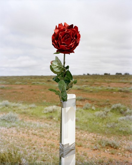 Amy Stein, Red Rose Road Marker, Road to Broken Hill