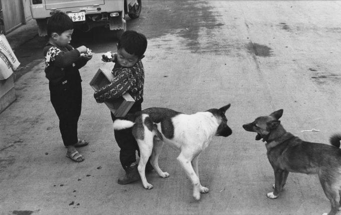Henri Cartier-Bresson, Boys and Dogs