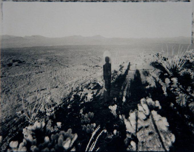 Mark Klett, Self Portrait with Saguaro