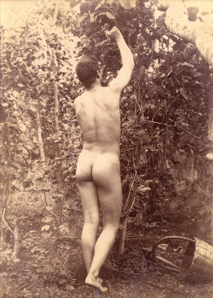 Mal Nude 92