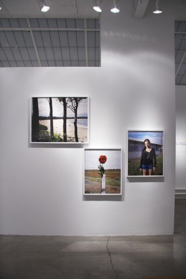 Amy Stein and Stacy Arezou Mehrfar, Tall Poppy Syndrome Exhibition