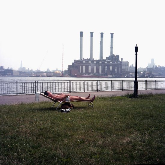 Janet Delaney, Sunbather