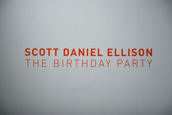Scott Daniel Ellison Birthday Party Installation