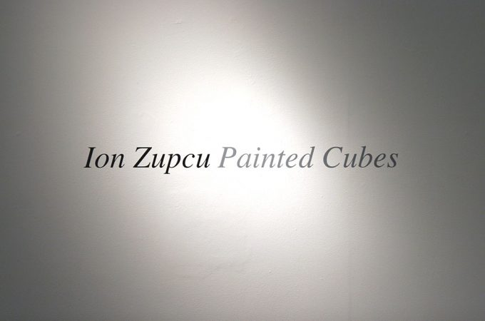 Ion Zupcu installation