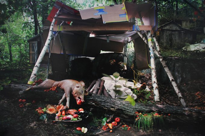 Anthony Goicolea, Still Life with Pig
