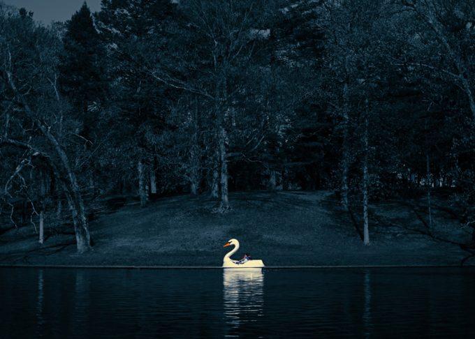 Rachel Hulin, Swan