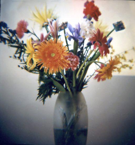 Nancy Burson, Growth In A Vase