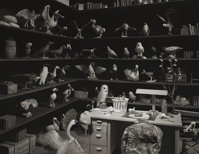 Lori Nix, Bird Room
