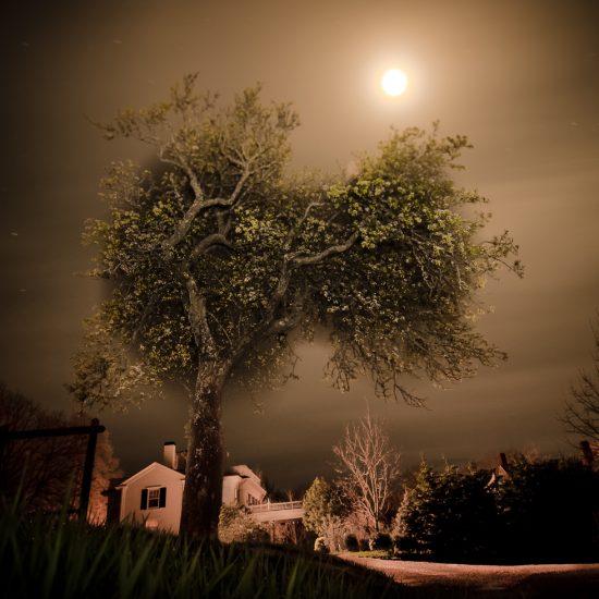 Bob Avakian, Full Flower Moon