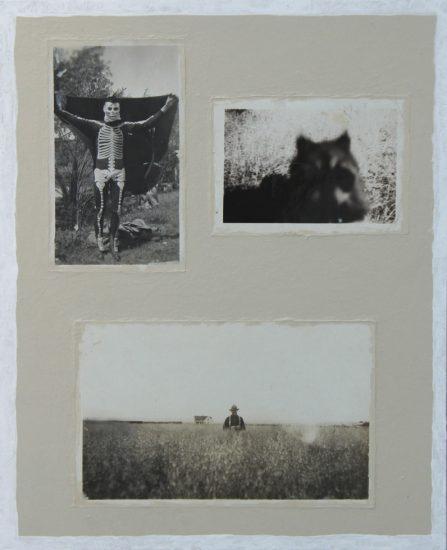 Skeleton, Raccoon, Scarecrow
