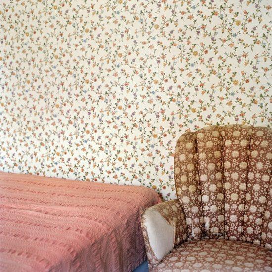 Frances F. Denny, Floral Patterns