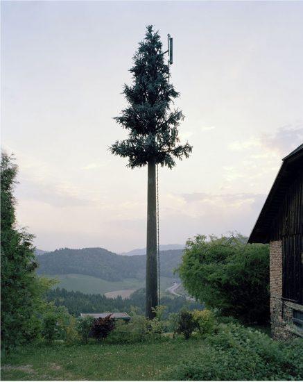 Robert Voit, New Trees, Haberberg, Griffen, Austria