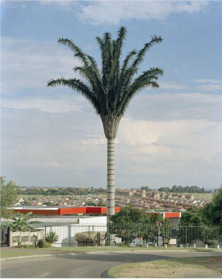 Robert Voit, Halfway Gardens, Midrand, South Africa