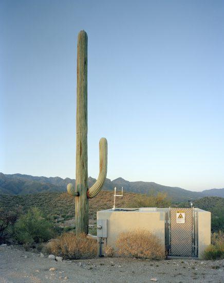 Robert Voit, Scottsdale, Arizona