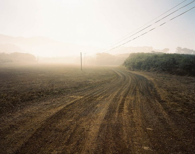 Nowhere, Palmer Davis
