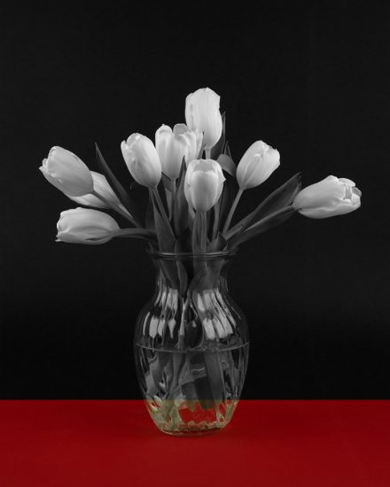 Pacifico Silano, Floral in Red, Black, and White