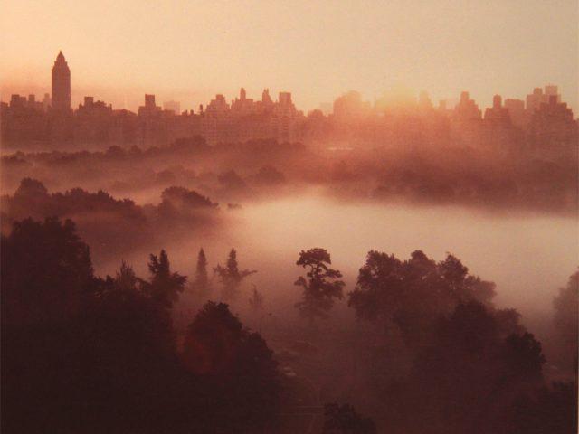 Ruth Orkin, Sheep's Meadow, 6:00 a.m.