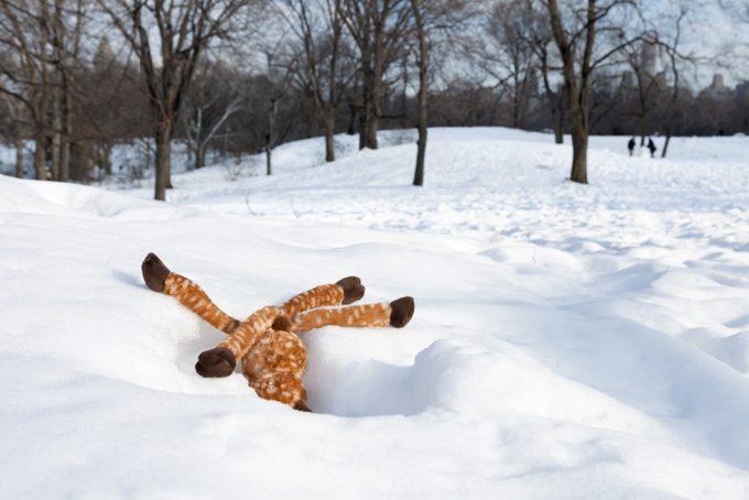 Jeanette May, Deer