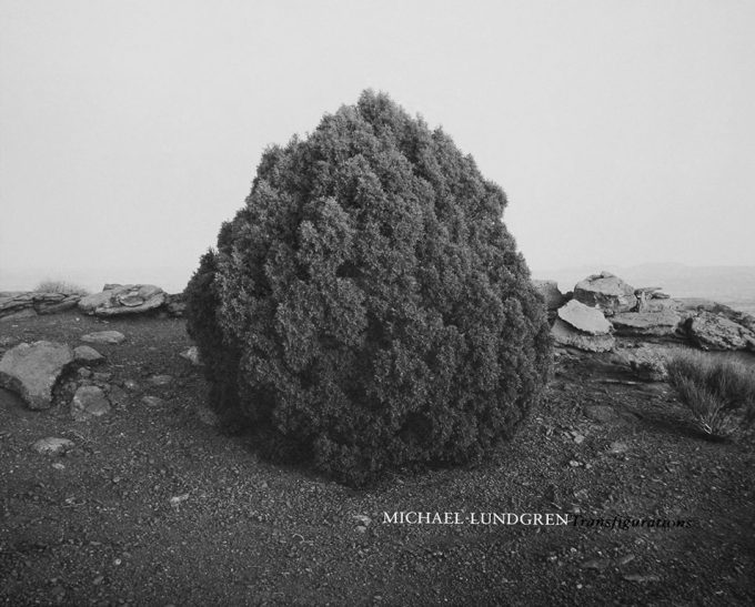 Michael Lundgren | Transfigurations