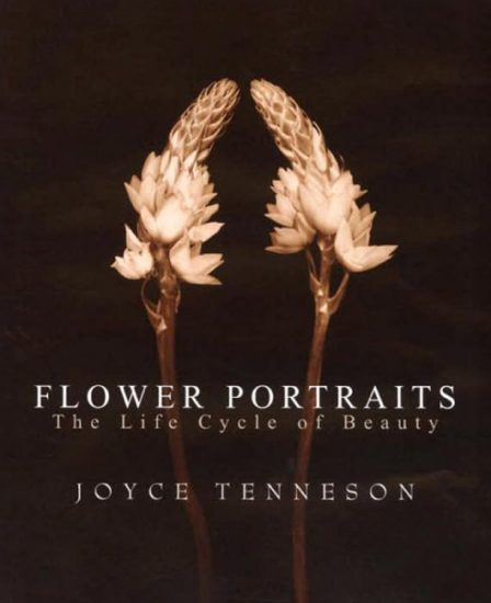Joyce Tenneson | Flower Portraits: The Life Cycle of Beauty
