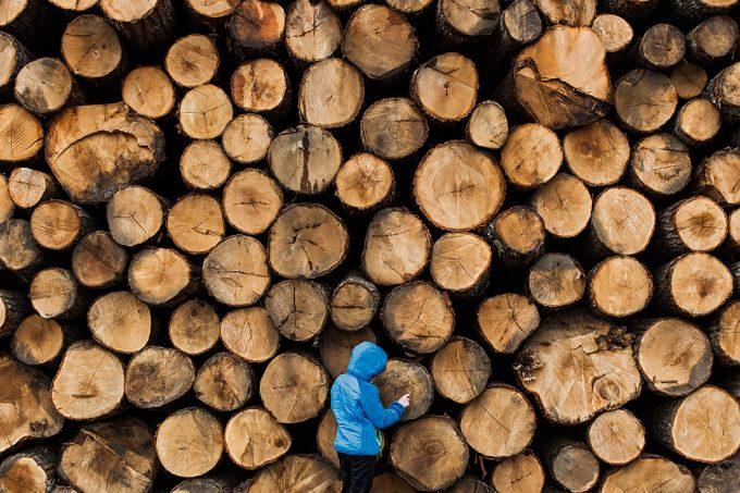 Burke, Jesse - Lumberjack