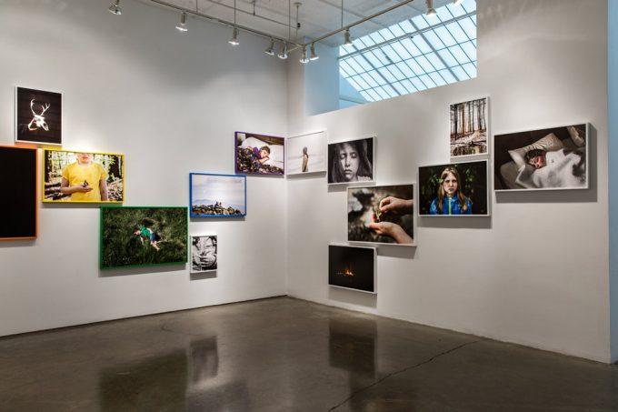 Wild & Precous Installation Image 3