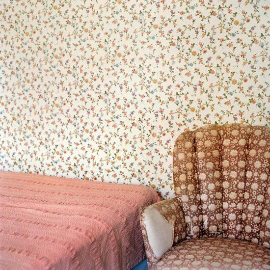 Denny, Frances F., Floral Patterns